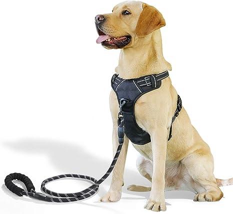 Raining Pet No Pull Dog Harness