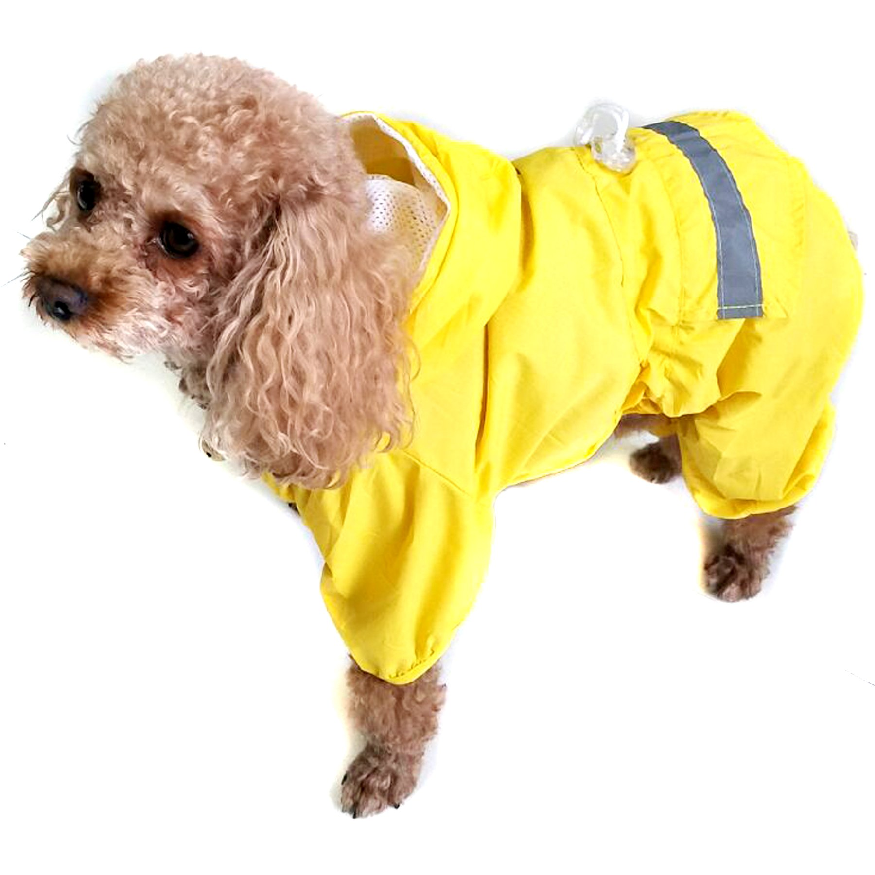 Alfie Pet by Petoga Couture - Willis Rainy Days Waterproof Raincoat (for Dogs and Cats) - Color: Yellow, Size: Medium