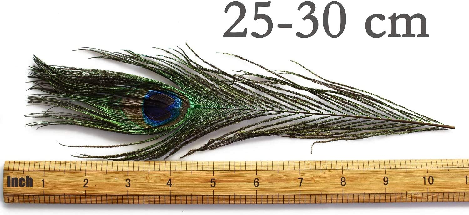 6pcs Natural Peacock Feathers Tail Herls Quills Wet Streamers Fly Tying Material