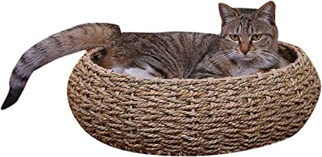Amazon.com: petpals Seagrass mascota cama, talla única: Mascotas