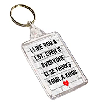 AKGifts I Like You a Lot Llavero - Divertido, Grosero Regalo ...
