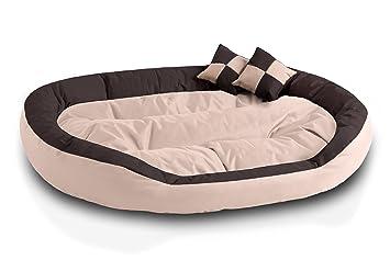 BedDog 4 en 1 SABA beige/marron XXXL aprox. 150x120cm colchón para perro,