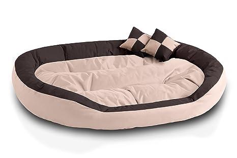BedDog 4en1 Saba Beige/Marron XXXL Aprox. 150x120cm colchón para Perro, 7 Colores, Cama, sofá, Cesta para Perro