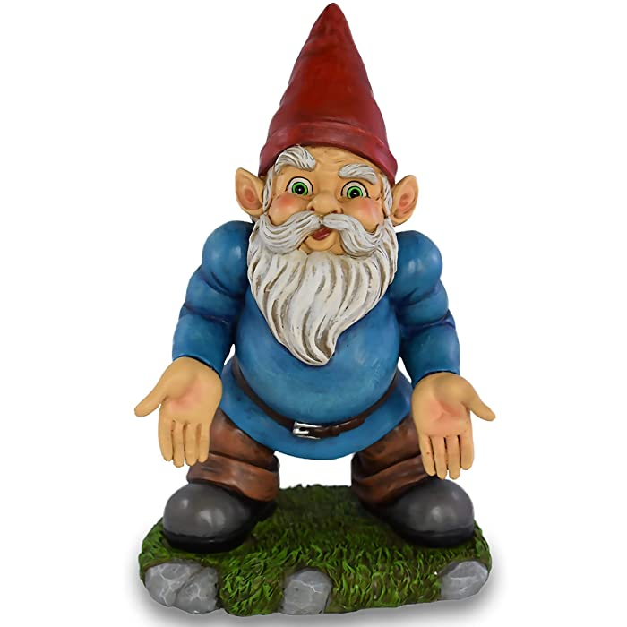 UpBlend Outdoors Norm The Garden Gnome, has Some SERIOUS Questions, As a Funny Garden Statue with a Unique Design, he is a Perfect Lawn Gnome Housewarming Gift or Backyard Decoration 9.75 inches Tall
