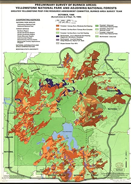 Amazon.com: Vintage 1988 Map of Preliminary survey of burned areas on sequoia fire map, valley fire map, lake fire map, wyoming fire map, beaver fire map, dodge fire map, idaho fire map, earth fire map, monticello fire map, olympic national park fire map, cascade fire map, jackson fire map, yosemite fire map, roosevelt fire map, lincoln fire map, stouts fire map, butte fire map, 1910 fire map, orion fire map, washington fire map,