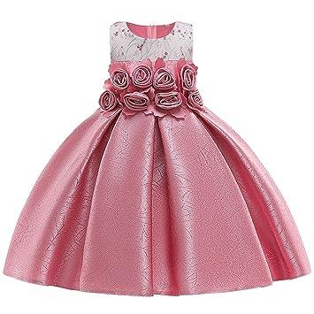 Amazon.com: Vestido de fiesta de princesa para niña, para ...