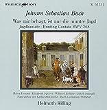 Kantate Bwv 208 / Konzert 1053