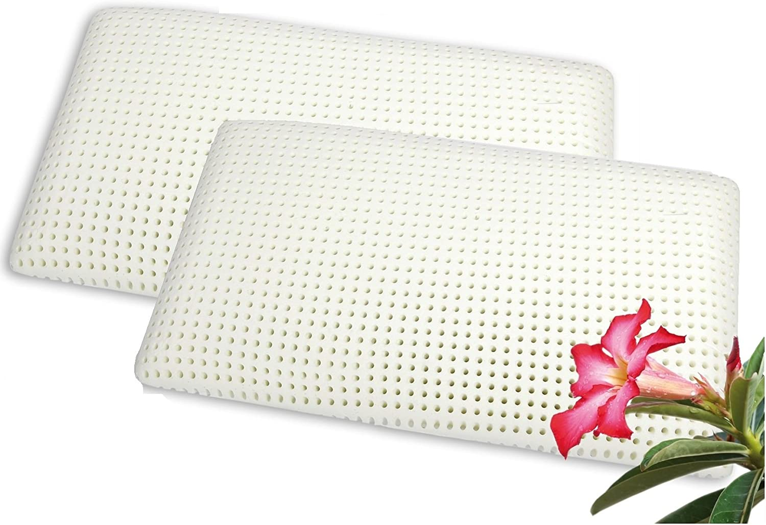 venixsoft PREMIUM DEAL Pair of latex foam pillows with more drilling for more transpiration, with pure cotton pillowcase, made in Italy