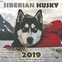 The Siberian Husky 2019 Mini Wall