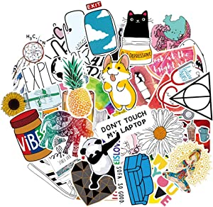 Laptop Stickers for Hydro Flask VSCO Girls, Waterproof Skateboard Stickers for Water Bottle DIY Xmas Decoration Laptop Decals Gift Card Luggage Car Bicycle Music Film Guitar Travel Case Random 46Pack