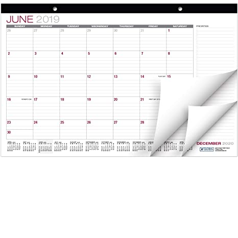 Amazon.com: Calendario de escritorio 2018-2019: 11.0 x 16.9 ...