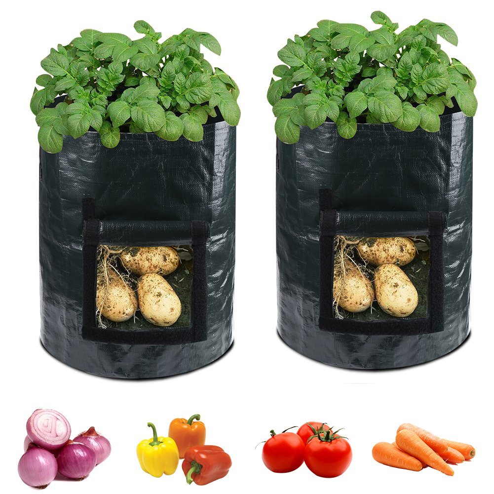 accmor 2 Pack 10 Gallon Garden Potato Grow Bags Planter Bag, Heavy Duty & Durable Bags with Flap and Handles Aeration Fabric Pots Heavy Duty for Grow Vegetables: Potato, Carrot, Tomato, Onion by accmor
