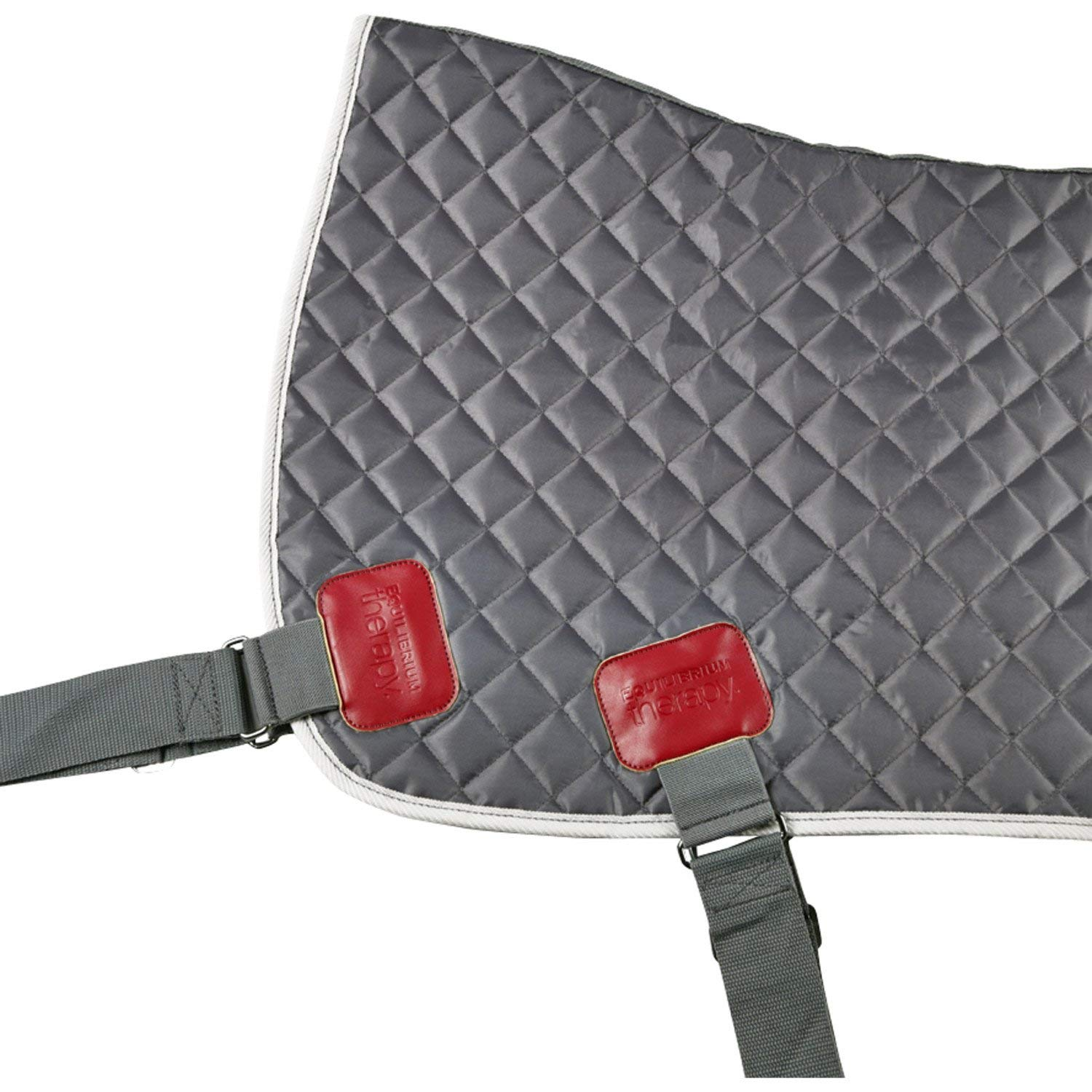 Equilibrium Therapy Back & Quarters Magnetic Pad One Size Grey