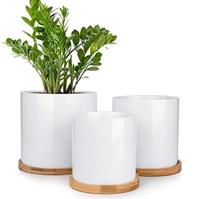 HOMENOTE Ceramic Planter Set of 3, Round Cylinder Tall White Plant Pots Indoor with Drainage Bamboo Trays for Plants Flowers Succulents : Garden & Outdoor