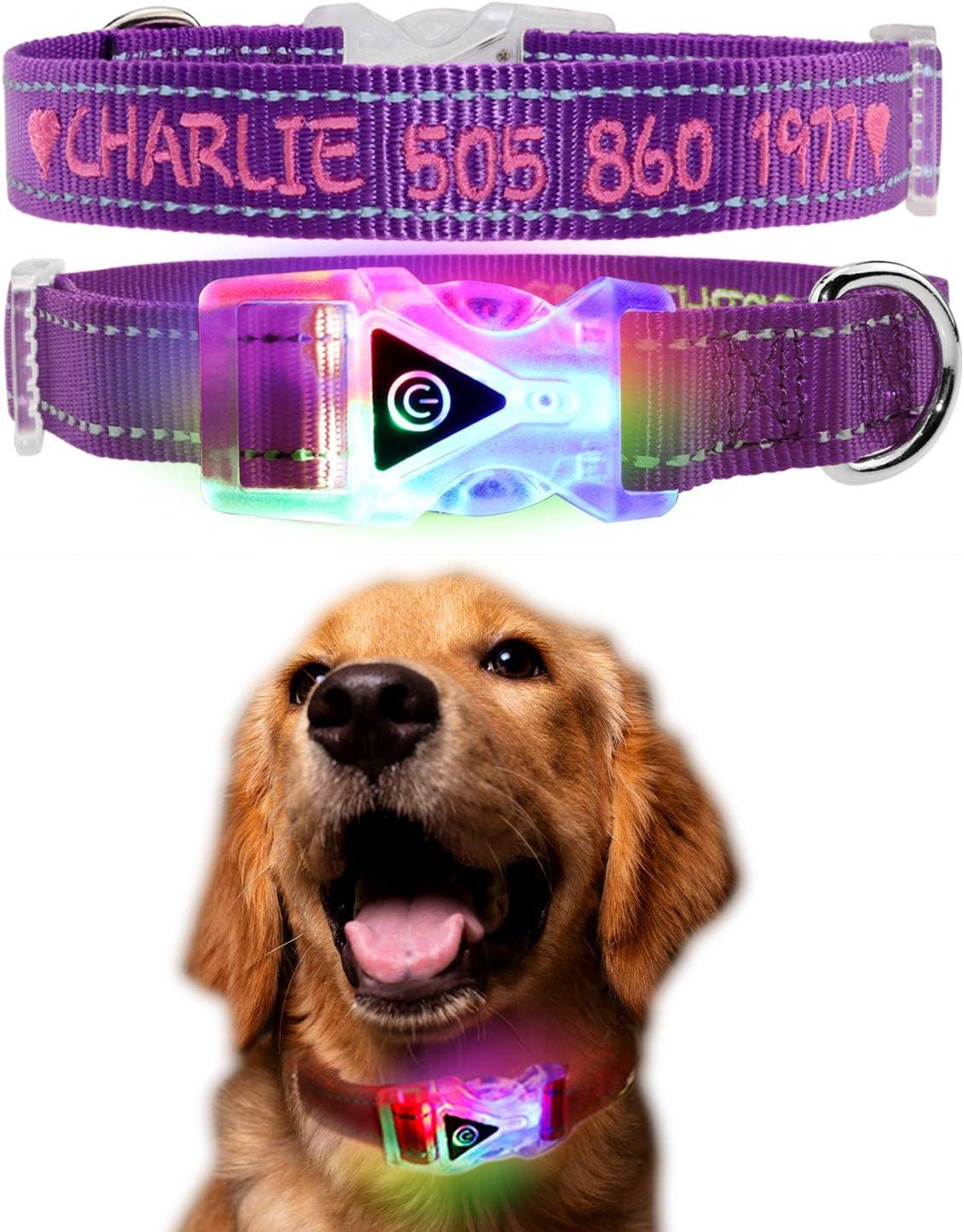 Collar de perro LED personalizado, Collar de perro bordado con ...