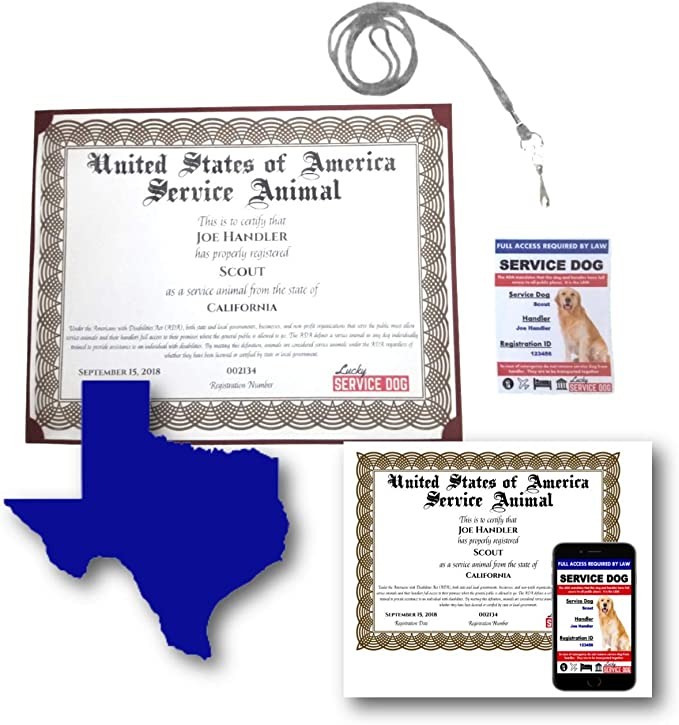 texas food handlers certification verification