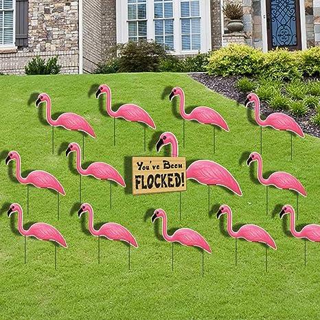Amazon.com: Set de bandada de flamencos color rosa Youve ...