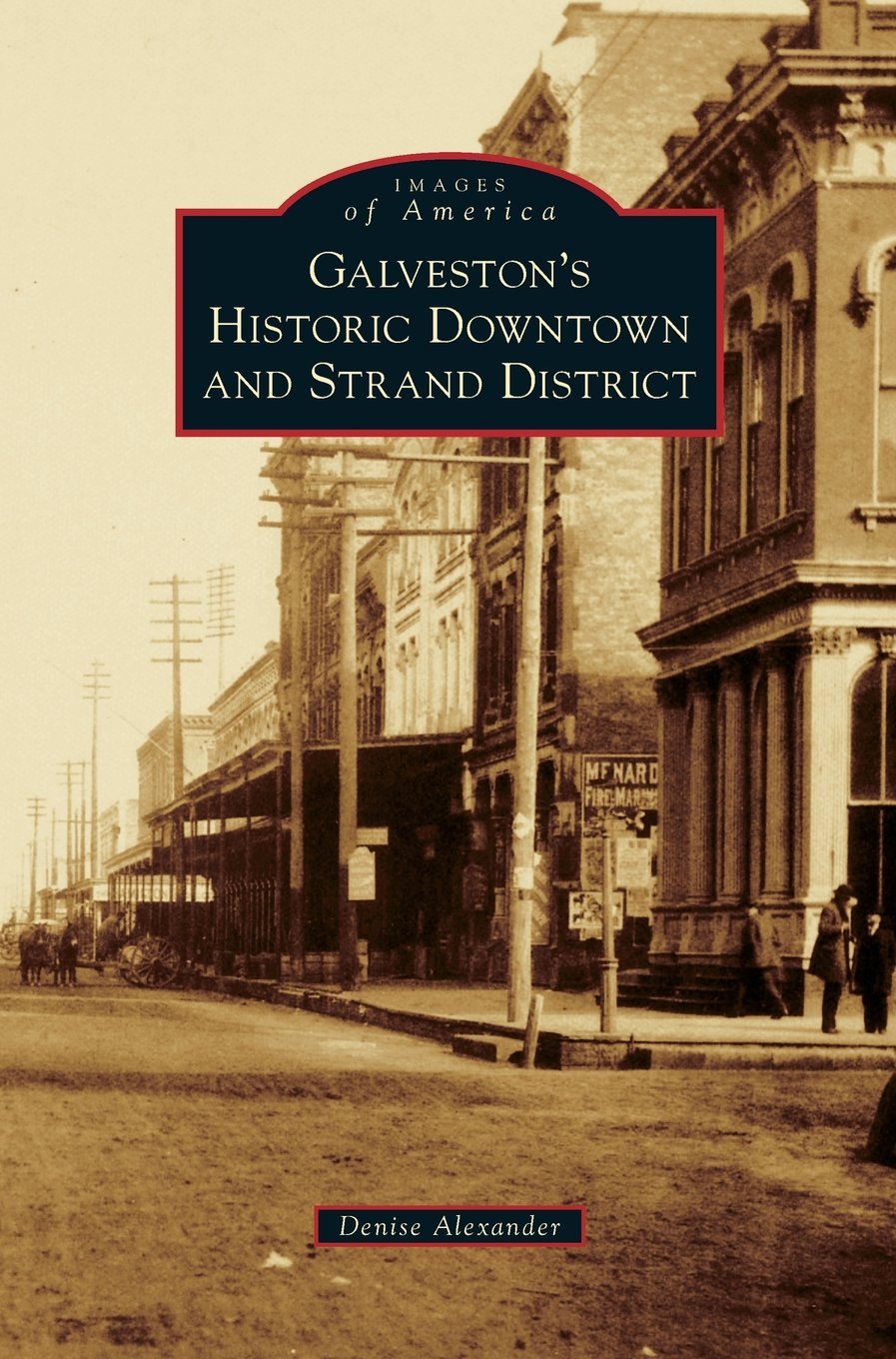 Download Galveston's Historic Downtown and Strand District PDF