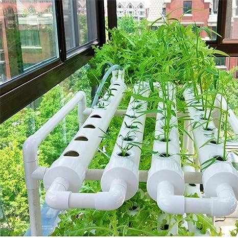 hidropónico NBLYW Sistemas De Cultivo Hidropnico 1 Capas 36 Sitios De