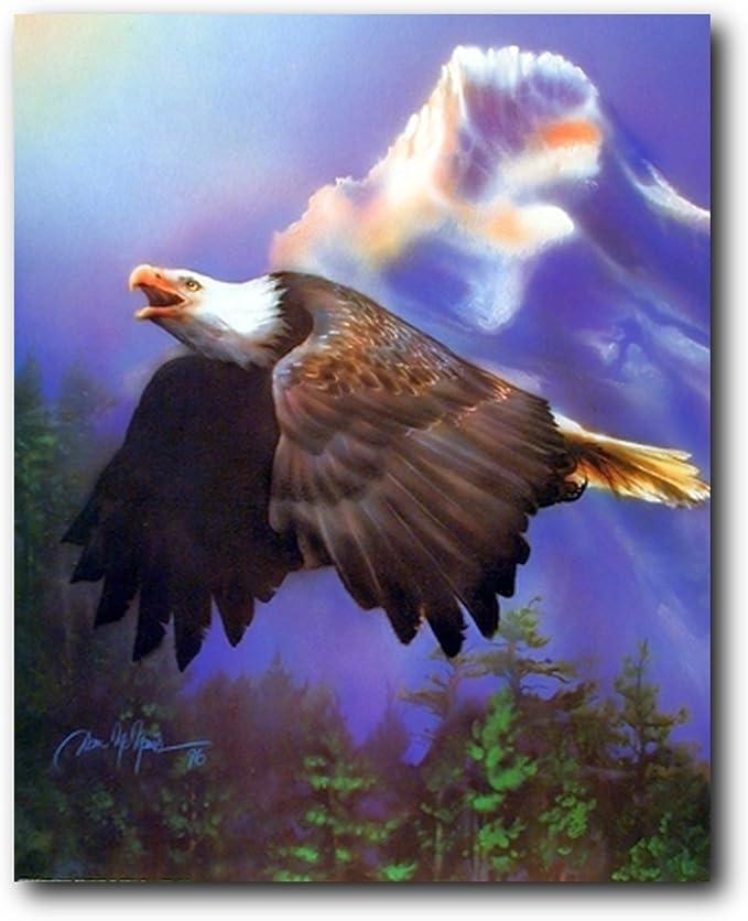 American Bald Eagle Flying Art//Canvas Print Home Decor Wall Art Poster C