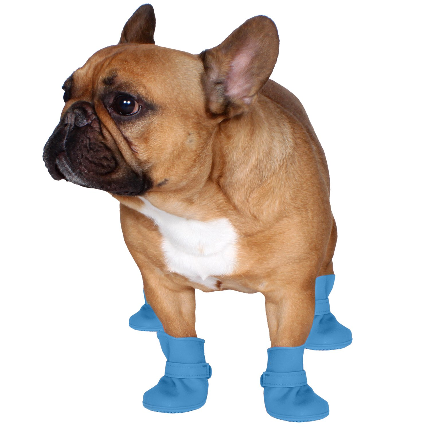 c1763a3553325 Jelly Wellies Preimum Rain or Shine Waterproof Dog Boot with Extra Firm  Gripping Soles