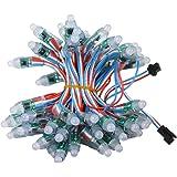 Rextin WS2811 Pixels Digital Addressable LED String Lights Waterproof RGB Full Color 12mm DC 5V (DC5V 50pcs)