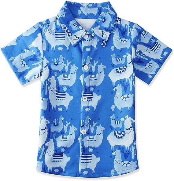AIDEAONE Niños Camisa con Estampado de Dinosaurio Camisas de Manga Corta con Botones 2-14 Años: Amazon.es: Ropa y accesorios