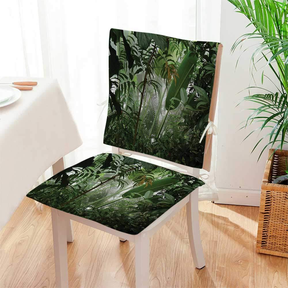 Amazon.com: Juego de 2 piezas de cojines para silla con ...