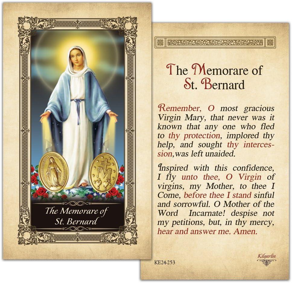 Saint Bernard Business Card//Credit Card Case