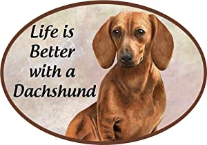 Dog Breed Magnets - Car Magnets - Refrigerator Magnets - Superior Quality - UV Protected - Perfect Cat/Dog Lover Gifts (Dachshund Red)