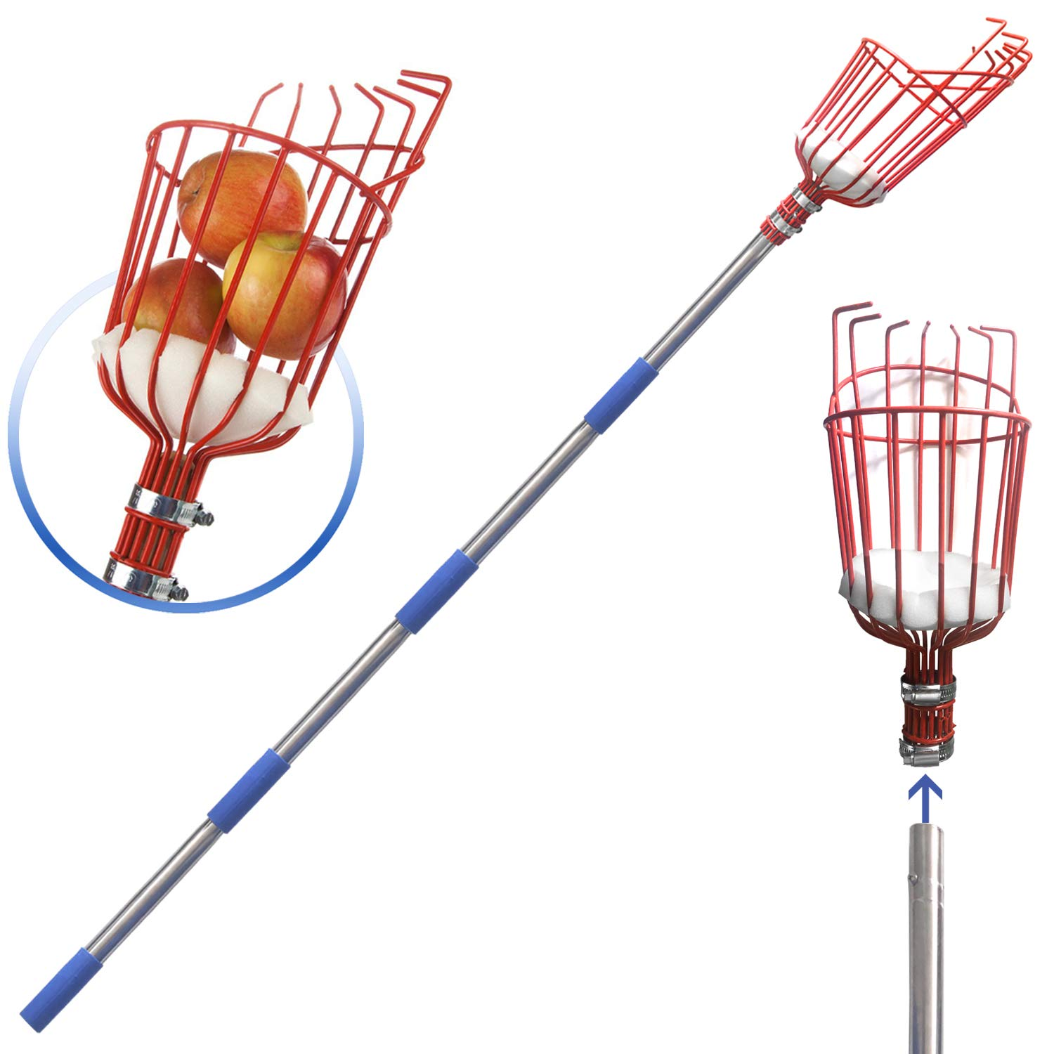 COCONUT Fruit Picker Tool, Fruit Picker with Basket and Pole,Easy to Assemble & Use Fruits Catcher Tree Picker for Getting Fruits (8ft) by COCONUT