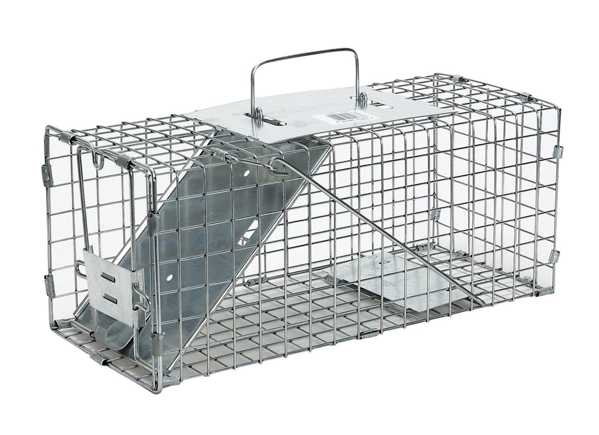 Havahart Small Professional Style One-Door Animal Trap for Squirrel, Rabbit, Skunk, and Mink- 1077-Made in the USA