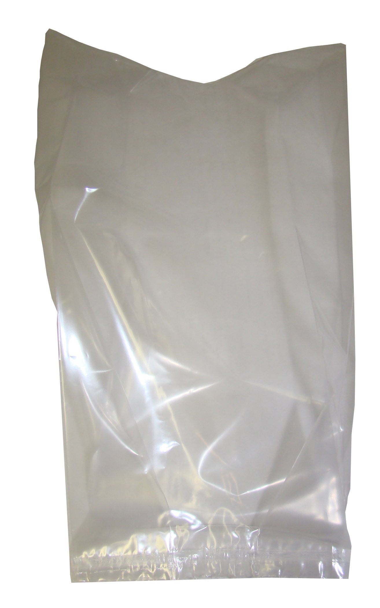 Clear Plastic Bag, 2 mil Thick, Clear, 5 x 3 x 12 Inches, 100 per Package