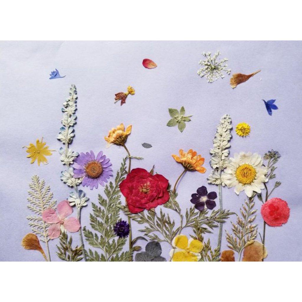 MagiDeal Trockene Blume Set K/ünstliche Bl/ätter Blumen Kunstblumen Tischdeko Bl/üten Verzierung 10pcs Gelb