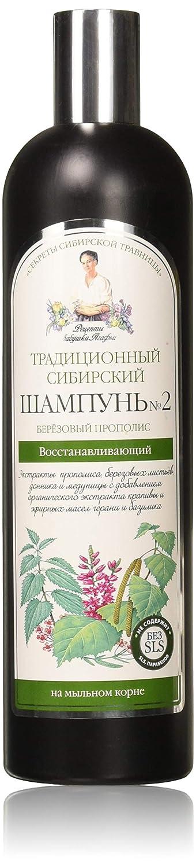 Grandma agafias recipes - Grandma agafia tradicional sibreian champú 550 ml - nº 2 en abedul propóleos - regeneración: Amazon.es: Belleza