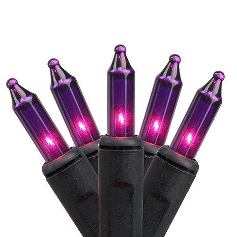 Image Unavailable - Amazon.com: Northlight Set Of 100 Pink Purple Mini Halloween Or