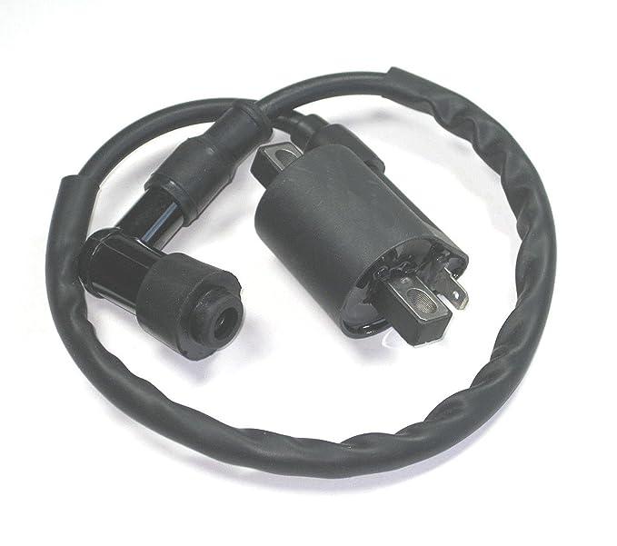 Stoneder accensione motore 5/pin AC CDI per Pit Dirt bike moto ATV Quad 50/cc 70/cc 90/cc 110/cc 125/cc 140/CC 150/cc 160/CC