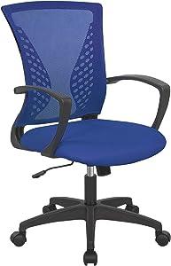 Ergonomic Office Chair Desk Computer Mesh Executive Task Rolling Gaming Swivel Modern Adjustable with Mid Back Lumbar Support Armrest for Home Women Men,Blue