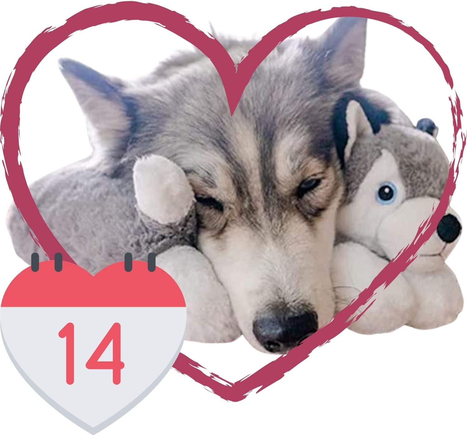 The Dog Pillow Company Plush Pet Pillow Dog Neck Pillow For Upper Spine And Calming Support Large Husky 14 X 14 X 6 Inches Kitchen Dining
