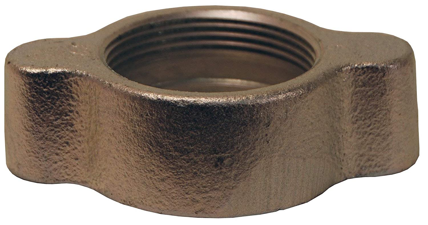"Dixon Valve B67 Plated Iron Ground Joint Boss Fitting, Wing Nut, 6"" Hose ID"