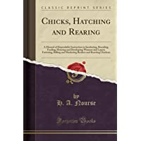 Chicks, Hatching and Rearing: A Manual of Dependable Instruction in Incubating, Brooding, Feeding, Housing and Developing Winners and Layers; ... and Roasting Chickens (Classic Reprint)