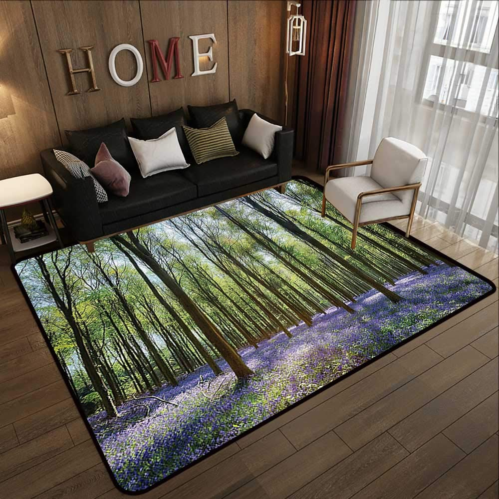 Pattern10 47 x 71 (W120cm x L180cm) Indoor Outdoor Rugs,Wooden,Planks Fence Garden Yard Summer Spring Daisy Flowers Butterfly Grass Rustic Print,Brown Green Yellow 63 x 94  Floor Mat Kitchen Long Carpet