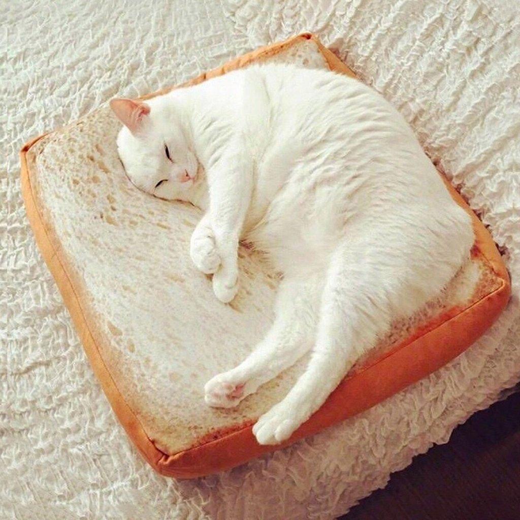 A 40406.5cm A 40406.5cm Cat House Cat Bed Detachable Cat Sleeping Bag Pet Mat Cat Villa Four Seasons Home Cat Toy (color   A, Size   40  40  6.5cm)
