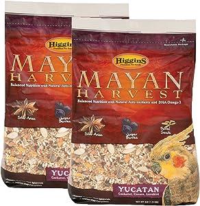 Higgins Mayan Harvest Yucatan Food Mix for Cockatiels, Lovebirds & Conures, 6 lbs.
