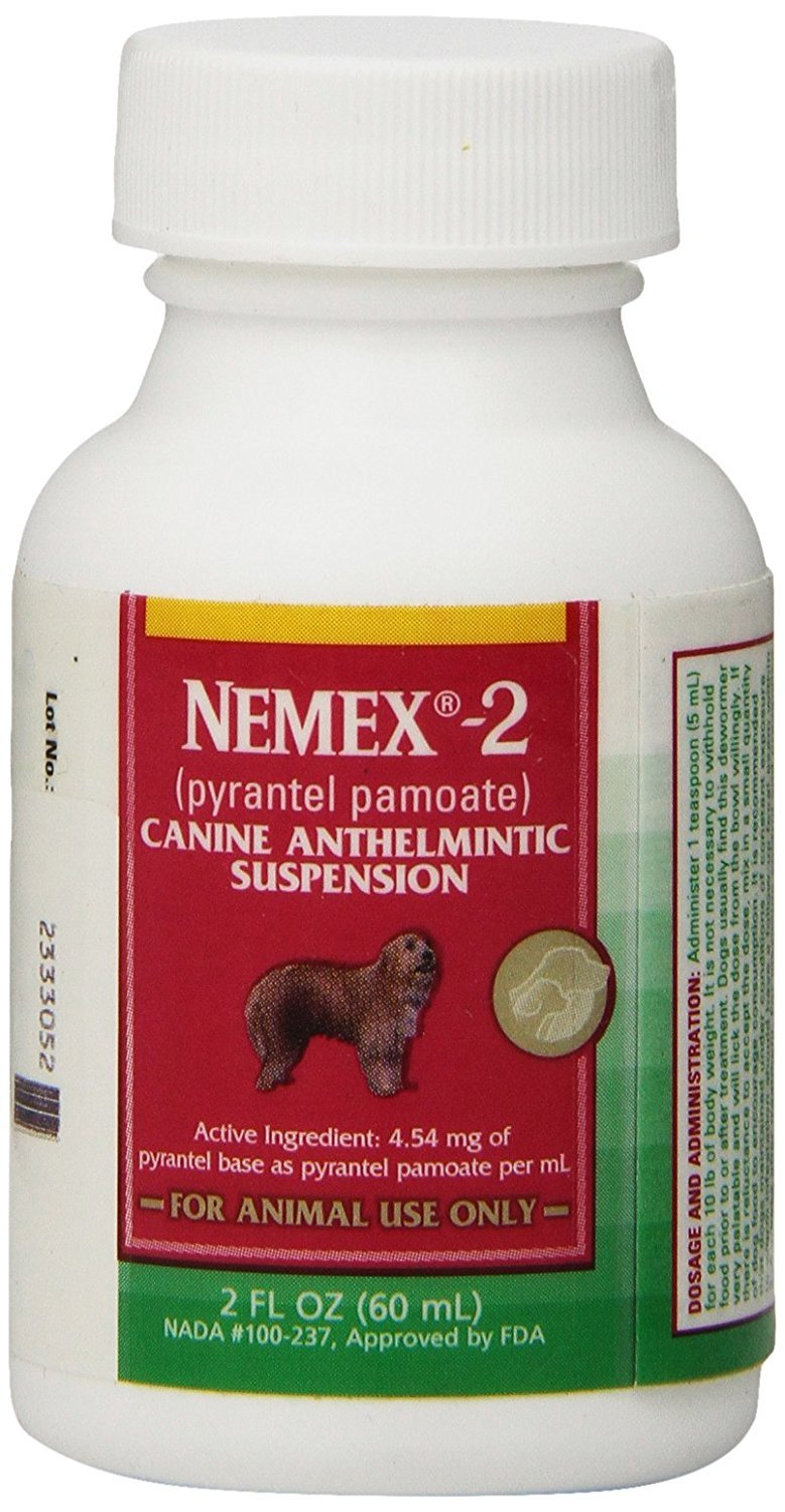 Nemex 2 - Puppy Wormer by Pfizer (Pyrantel Pamoate) 2oz 60ml by Pfizer