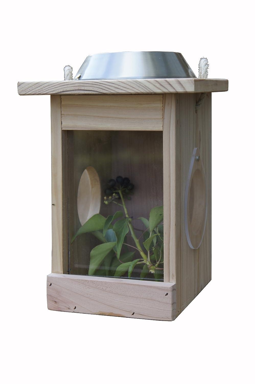 Wildlife World - Hotel para insectos y comedero para pájaros (funciona con energía solar)