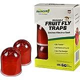 Amazon.com: BEAPCO Fruit Fly Traps, no tóxico interior Live ...