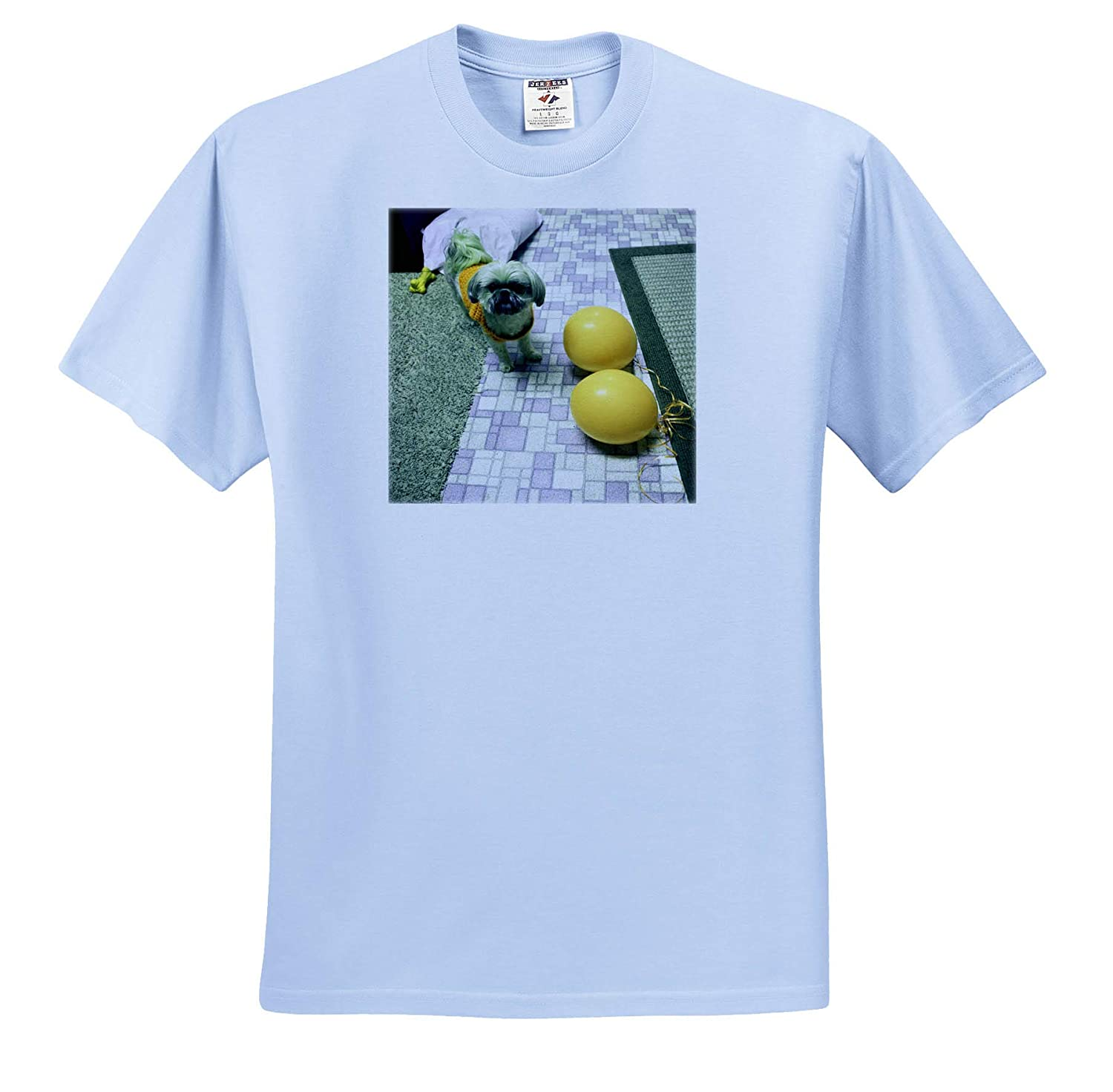 A Green and Yellow hue on a Puppy with Balloons 3dRose Jos Fauxtographee- Shih Tzu ts/_317885 Adult T-Shirt XL