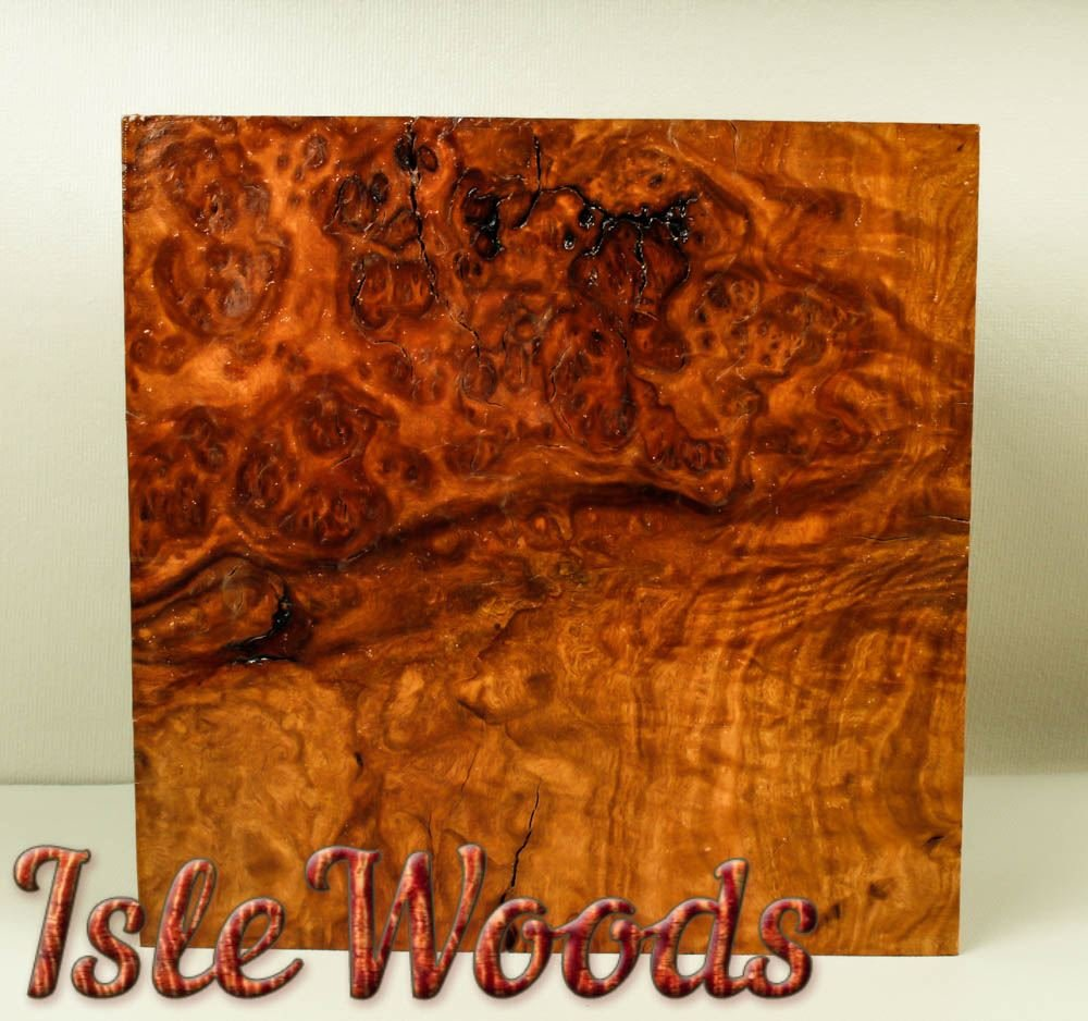 Brown Mallee Burl Exotic Bowl Wood Turning Blank Game Calls BML1120