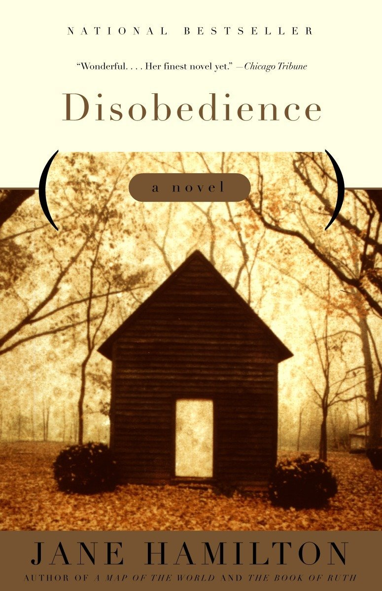 Disobedience: A Novel ebook